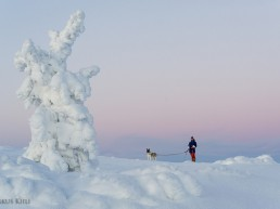 Winter wonderland at Ylläs - By staying at Kuerkievari Hotel or Hostel you can experience it yourself!