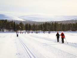 Let your adventure begin, skitracks and snowshoe trails are waiting at our doorstep!