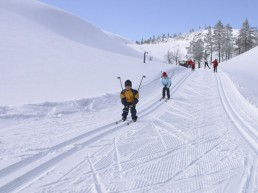 Have a sporty holiday by skiing at Ylläs